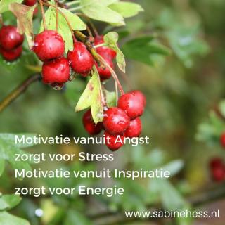 motivatie angst stress inspiratie energie